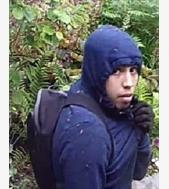https://ams.crimestoppers-uk.org/Images/20798.jpg?size=listing